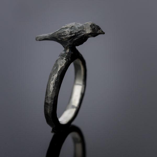 Žiedas paukštis